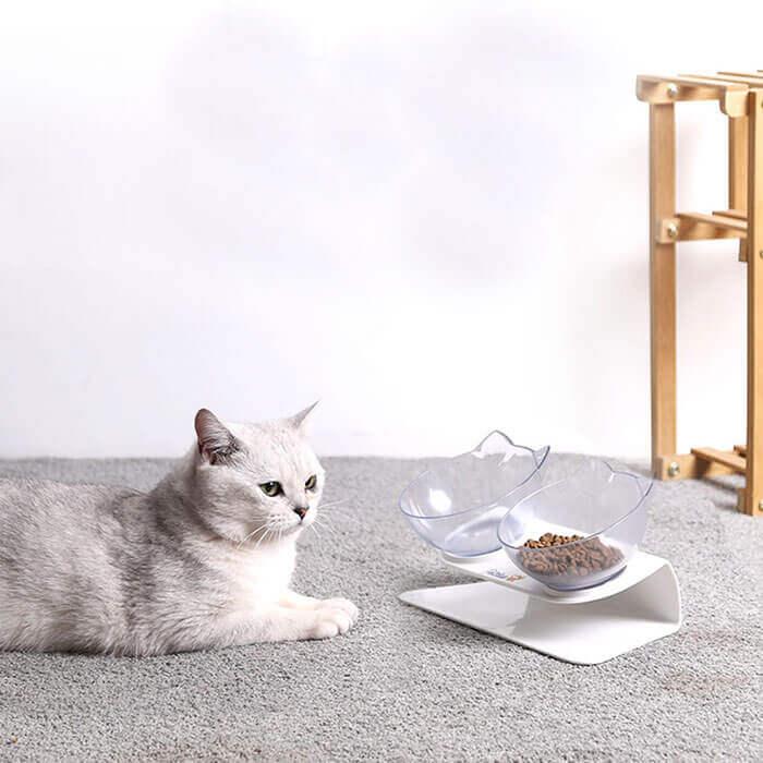 Anti Vomiting and Orthopedic Pet Bowl